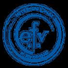 efv-AG Vermögensverwaltung Finanzberatung